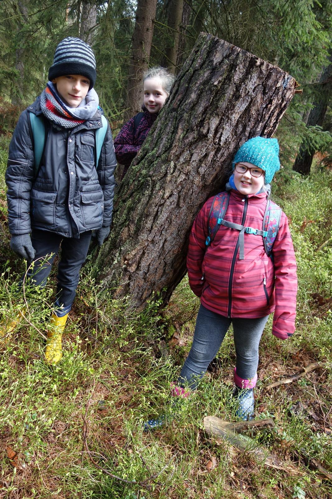 Waldjugendspiele GSK (118)